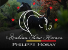 philippehosay-0615