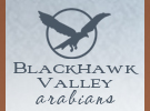 blackhawkvalley