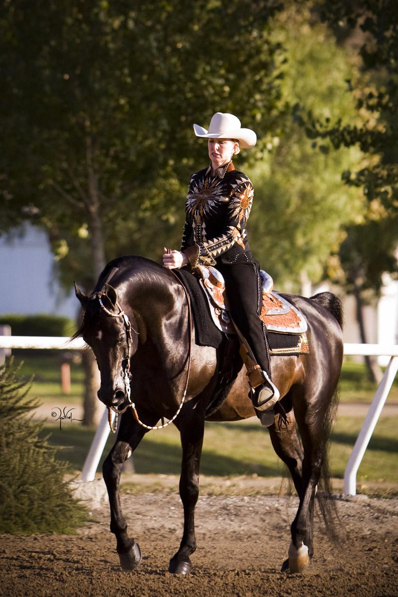Wundervoller Multikulti-Fick Mit Umgekehrtem Cowgirl