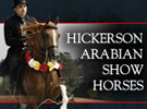 hickersonarabians