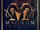 magnumarabians