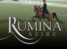 ruminaafire-0914