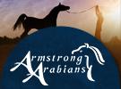 armstrongarabians-0115