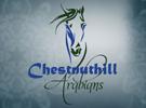 chestnuthillarabians-0815