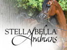 0816-stellabella