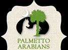 0417-palmetto