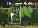 0619-HENNESSEYARABIANS